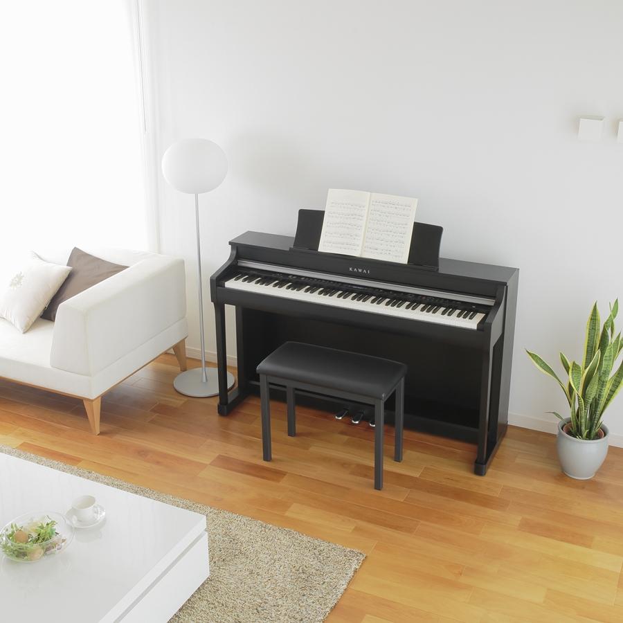 Bild zu Neues Digitalpiano; E-Piano; Stage-Piano; günstig mieten!